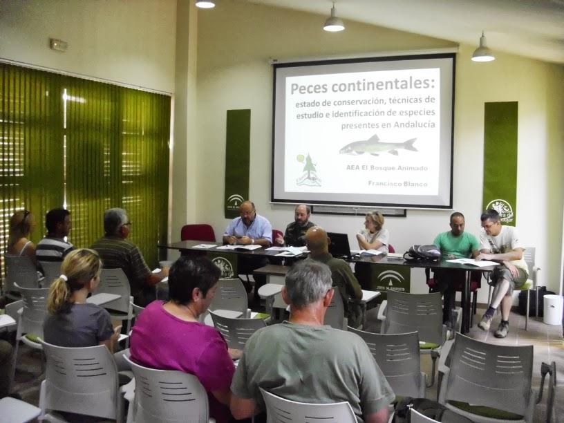 Tallere de Peces Andújar, 21-6-2013