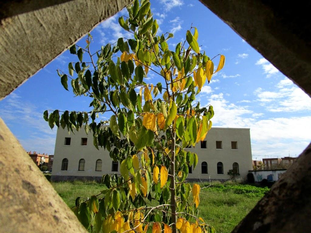 Diciembre 2014: el solar de la antigua cárcel