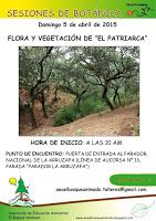 """Abril 2015: Flora y vegetación de """"El Patriarca""""."""