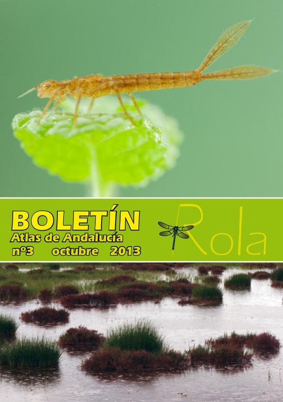 Boletín de la ROLA nº 3, octubre 2013