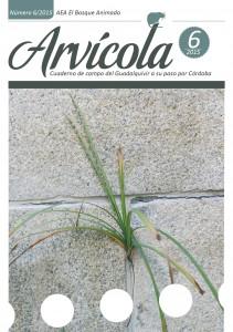 Arvicola nº6 (2015)