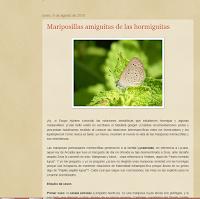 Blog Río Vivo : licénidos de Córdoba capital