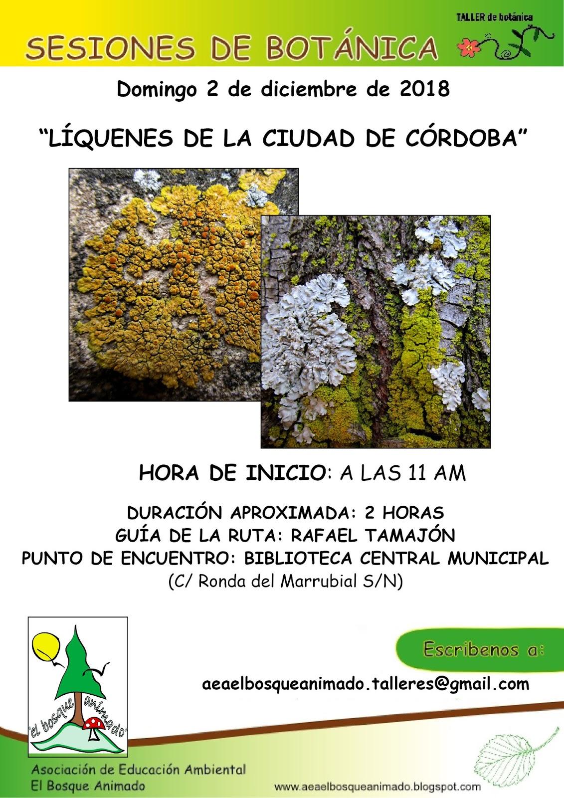 """Ruta botánica 2-12-2018: """"Los líquenes de la ciudad de Córdoba"""""""