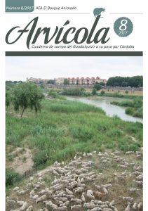 Arvicola 8