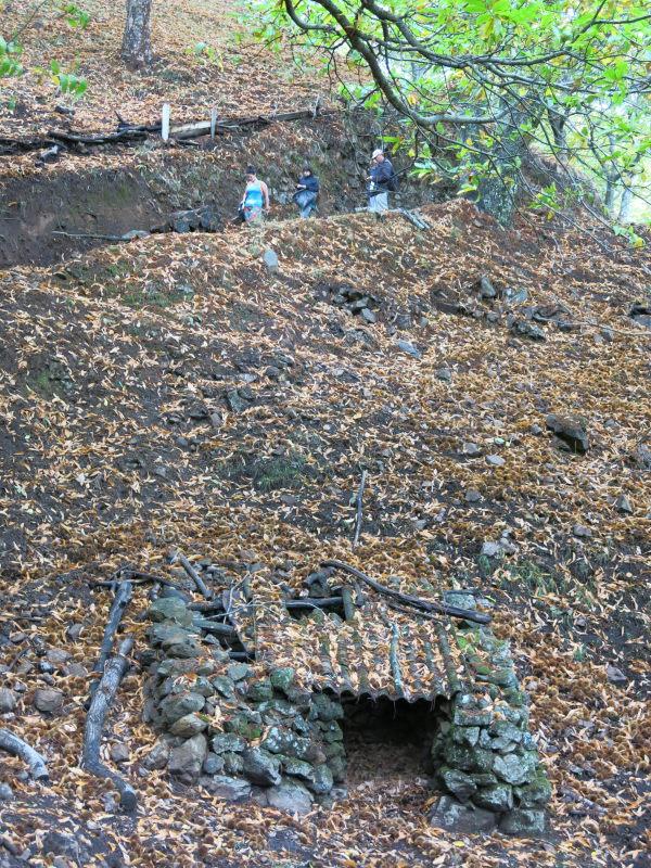 De ruta por los castañares en otoño- Valle del Genal