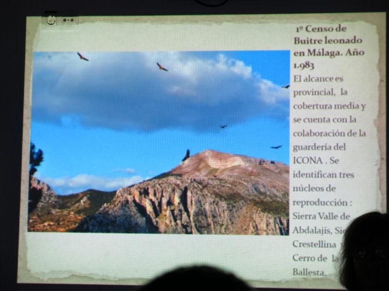 Presentación Censo buitres en Málaga