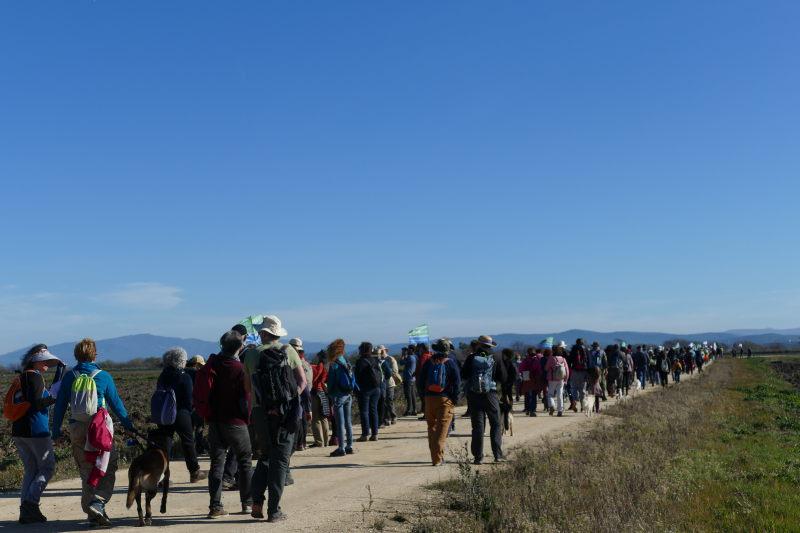 II Marcha por la recuperación de las Lagunas de la Janda