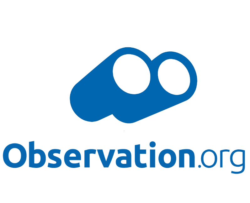 Logo Observados AEA BA